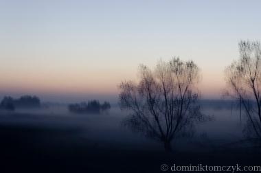 Kowalówka, świt, poranek, wschód słońca, dawn, morning, sunrise, złota godzina, golden hour, mgła, fog, Roztocze, Nikon D700, krajobraz, landscape