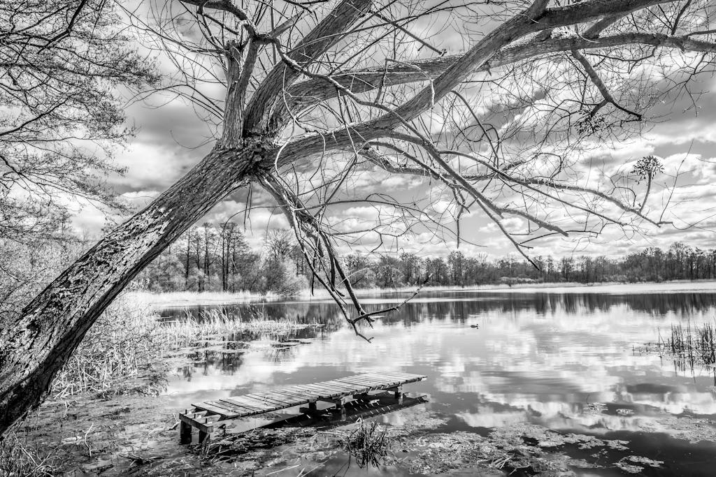 Krajobraz   Landscape   Black and White