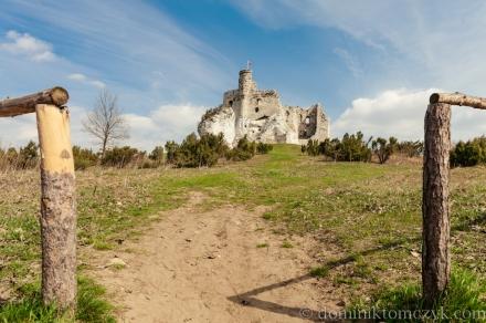 Mirów, Mirow, zamek w Mirowie, ruiny zamku w Mirowie, castle in Mirow, ruins of a castle in Mirow, Szlak Orlich Gniazd