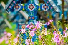 Rumunia, Sapanta, Wesoły Cmentarz, -9006