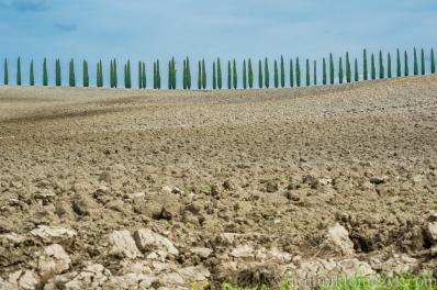 Tuscany-Toskania-2209