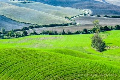 Tuscany-Toskania-2294