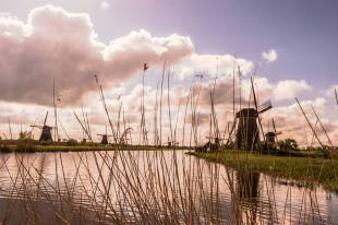 Holandia- Kinderdijk-80492