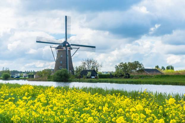 Holandia- Kinderdijk-80515