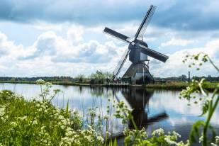 Holandia- Kinderdijk-80522